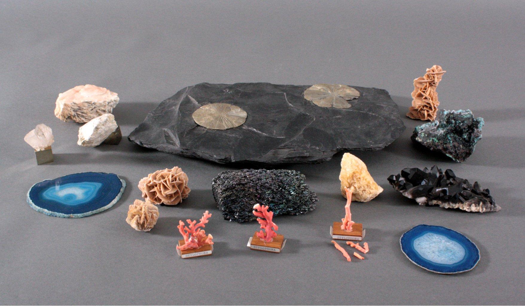 Mineralien und Fossiliensammlung