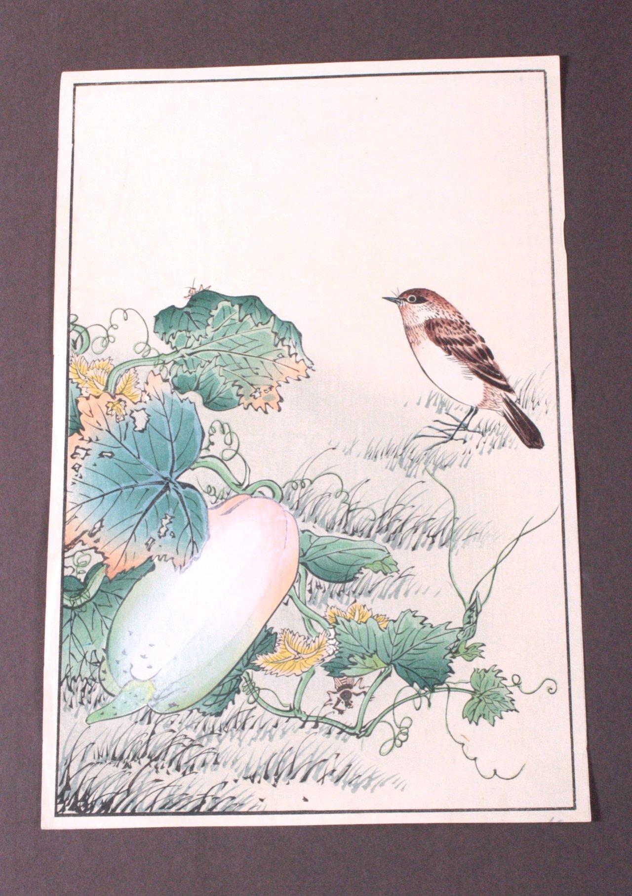 Nakayama Sugahudo ?-?, Vogel mit Kürbis