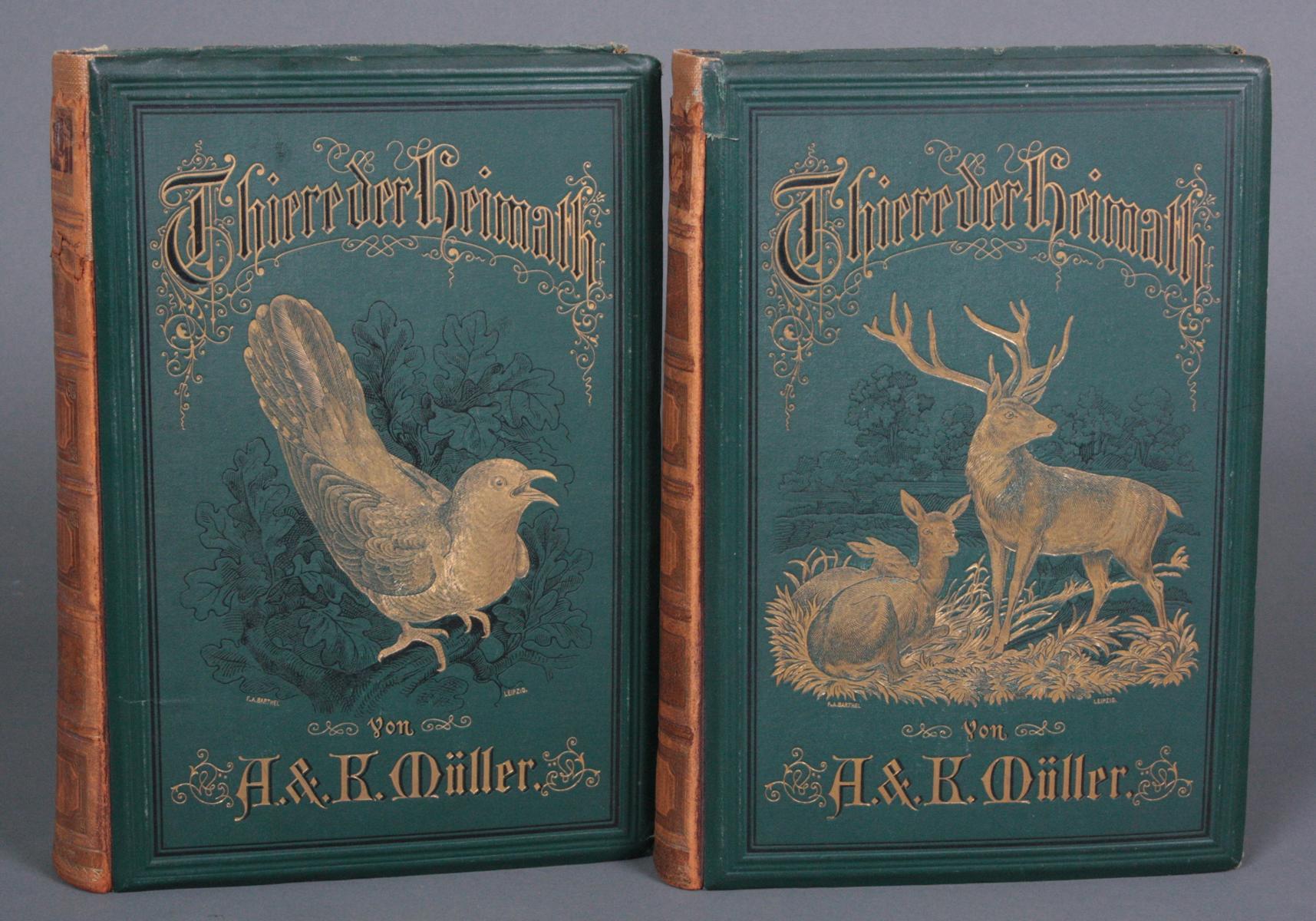 Thiere der Heimath Band I und II 1882/1883, A. & K. Müller