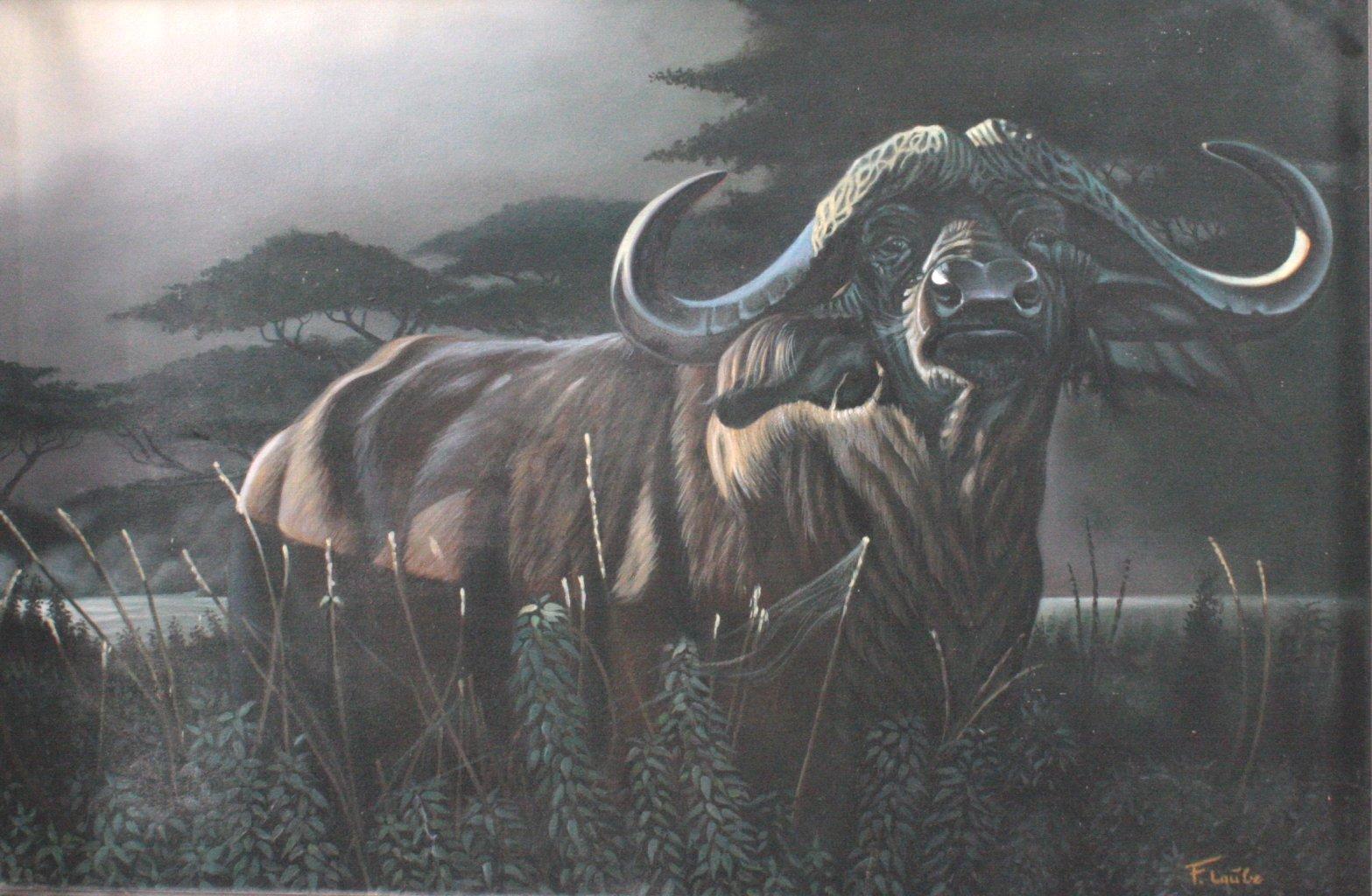 F. Laube (1914-1993), Afrikanischer Wasserbüffel-3
