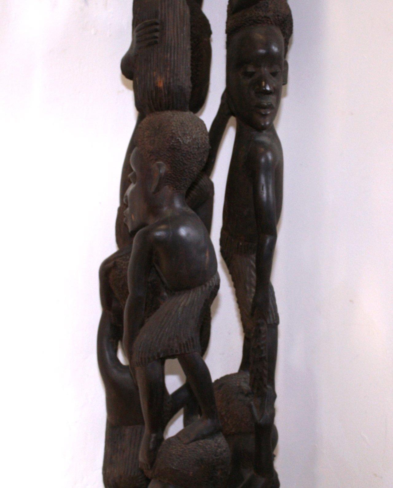 Großer Afrikanischer Lebensbaum-5