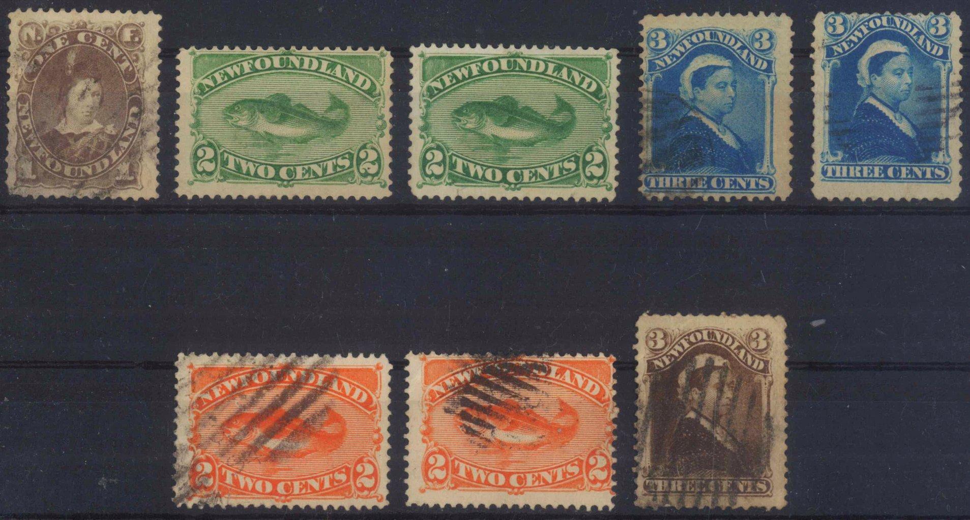 1880 NEUFUNDLAND
