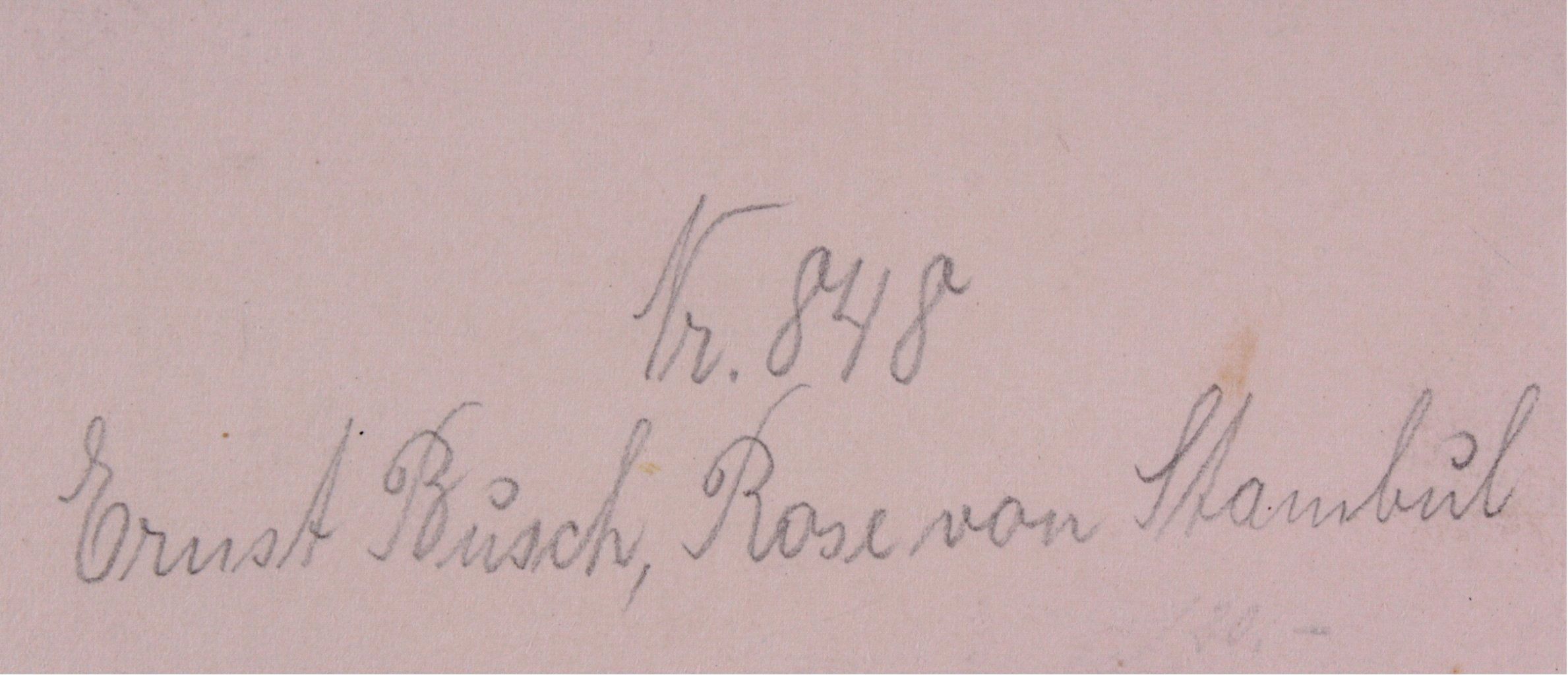 Ernst Busch, Rosen von Istanbul-4