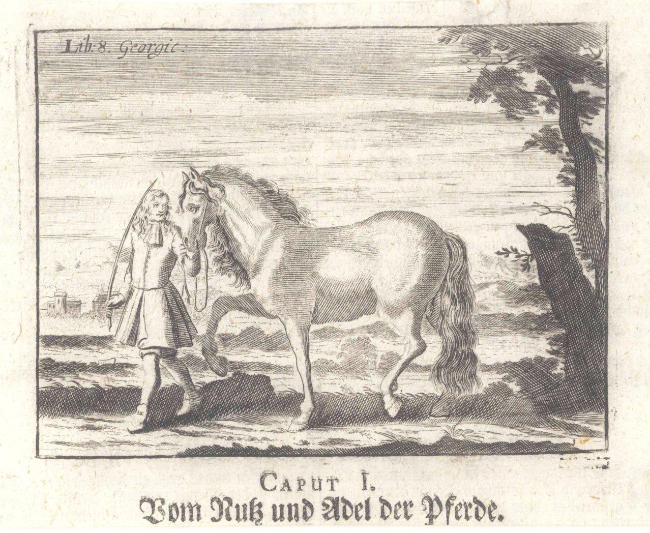 Pferde – Kupferstich und 2 Punktierstiche-3