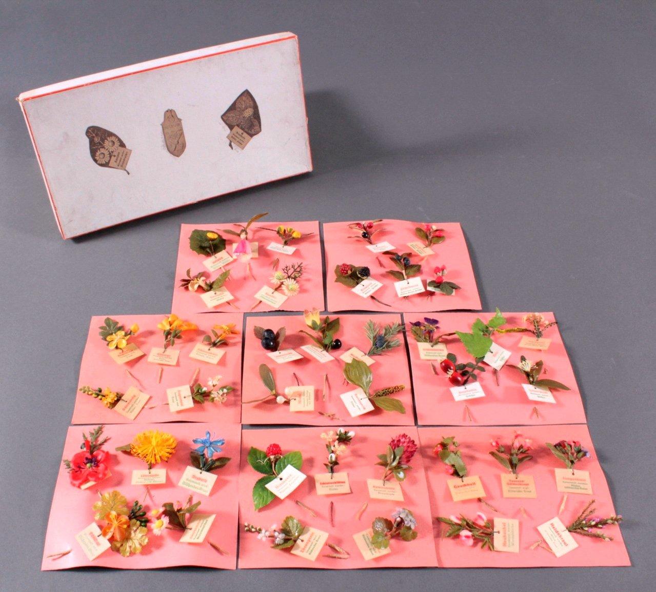 Sammlung WHW Abzeichen, Heimische Pflanzen und Früchte