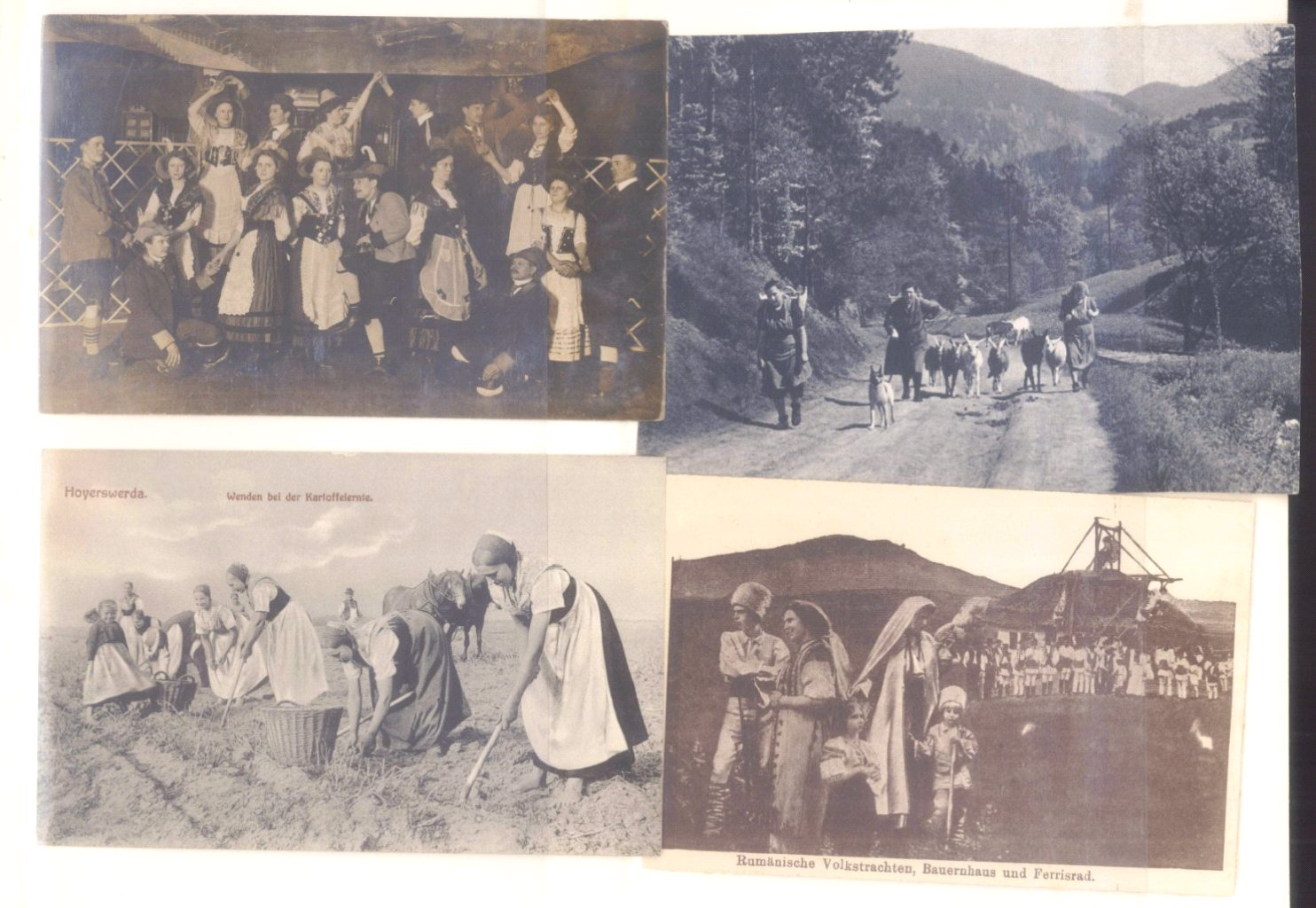 Postkartenalbum vor 1950-13