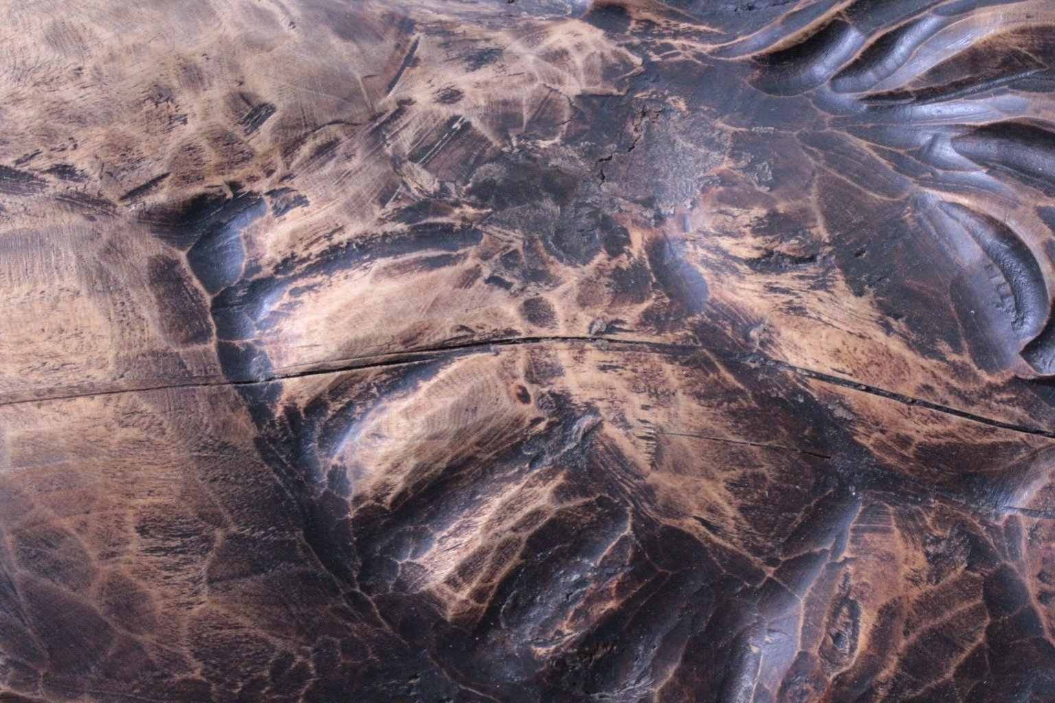 Brüllender Löwe, Holzskulptur-7
