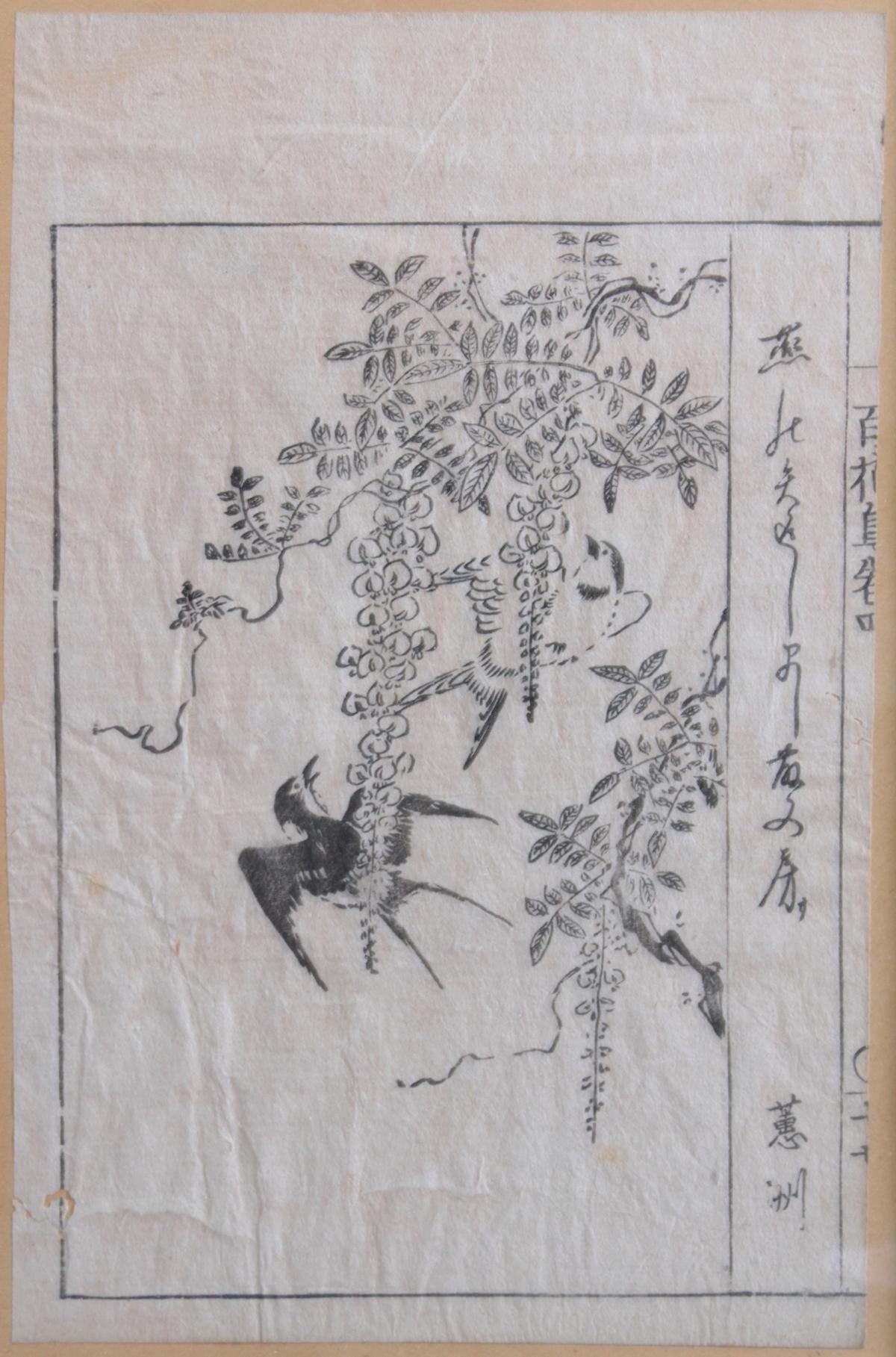 2 antike asiatische Tuschezeichnungen-3