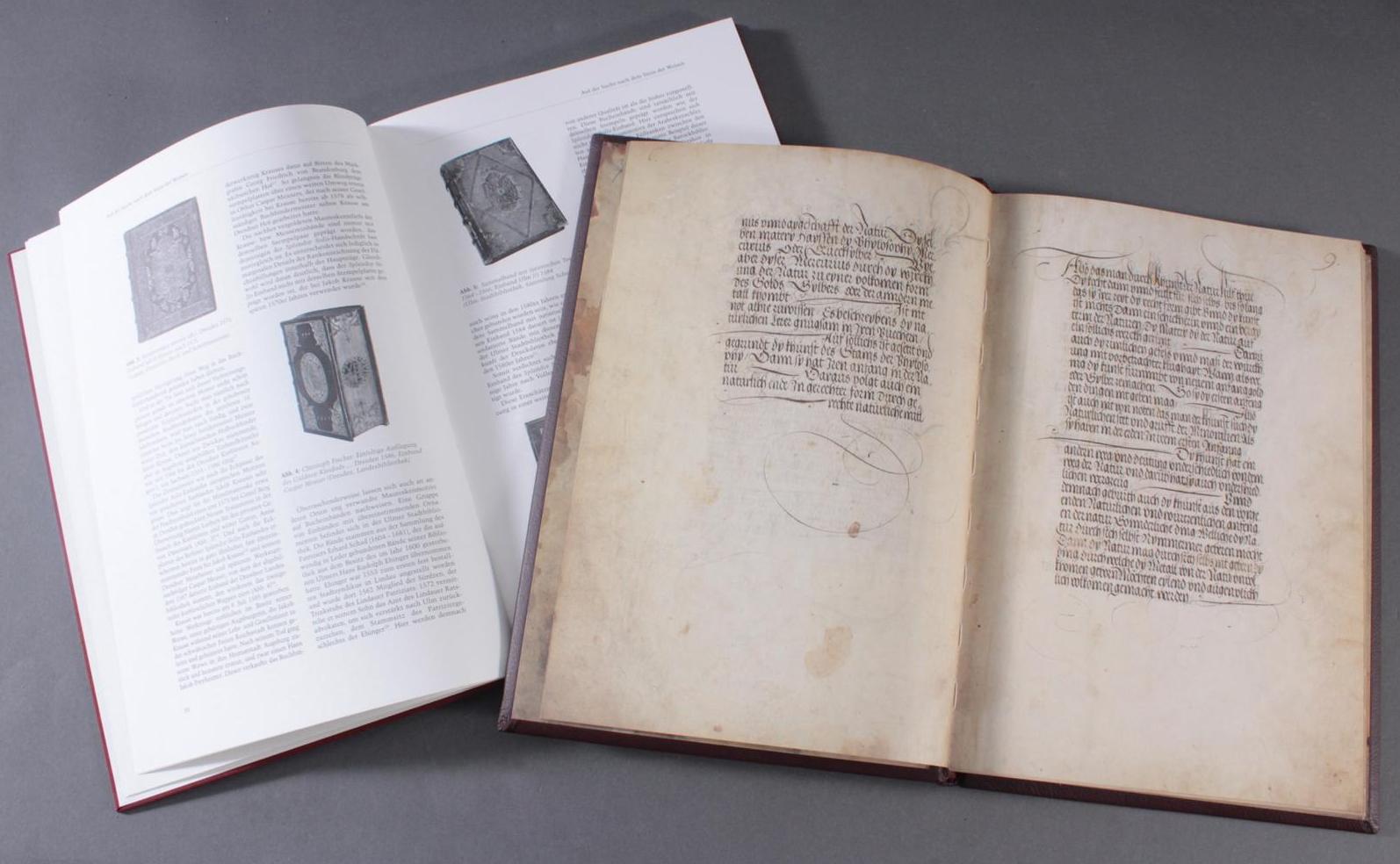 Faksimile, Biblia 1630 Das neue Testamen durch Martin Luther verdeutscht, Splendor Solis-2
