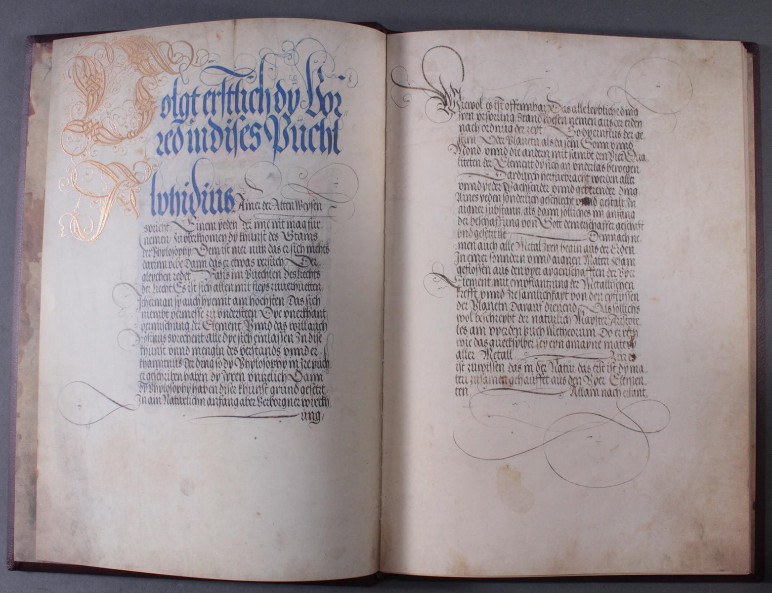 Faksimile, Biblia 1630 Das neue Testamen durch Martin Luther verdeutscht, Splendor Solis-4