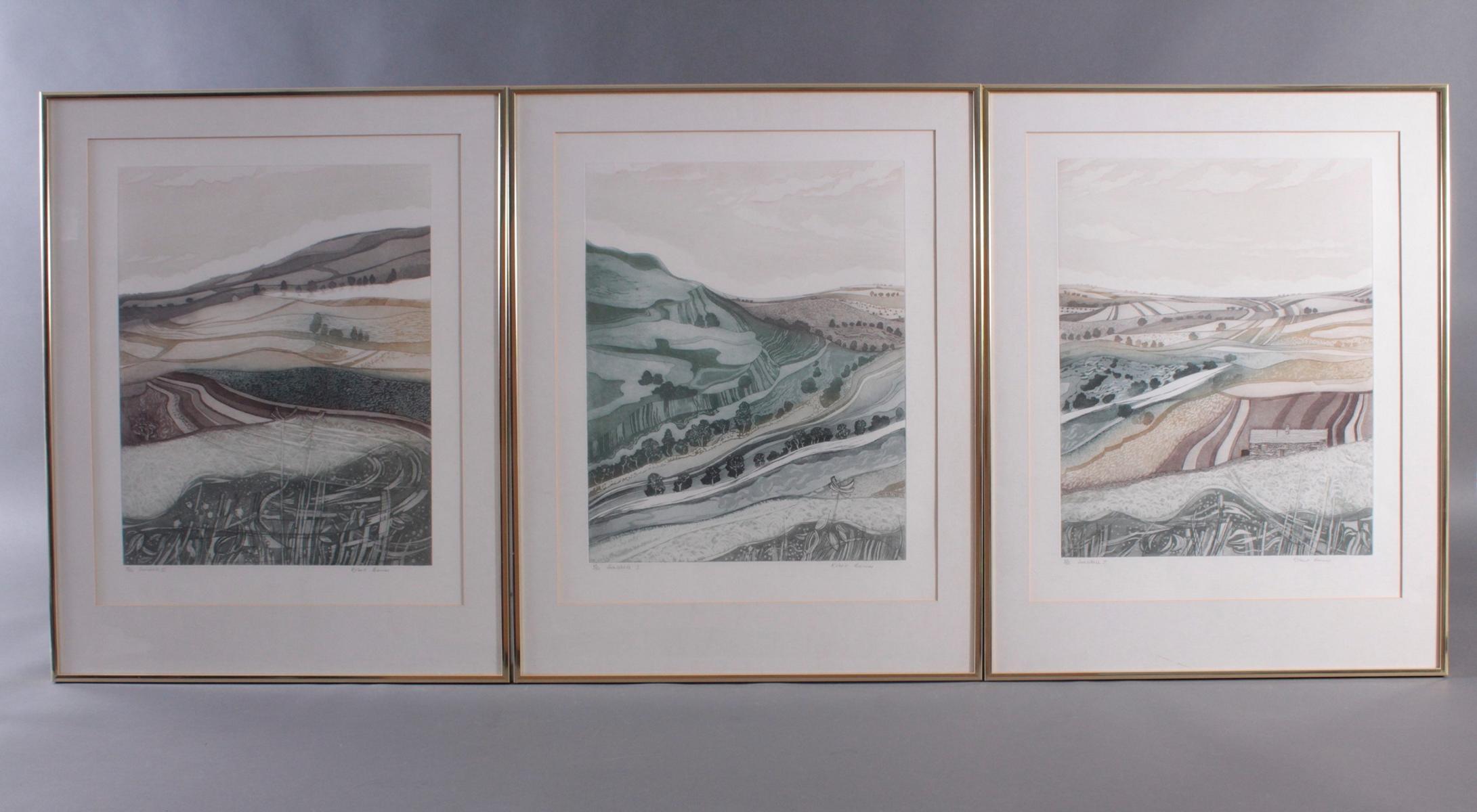 Robert Barnes (1974). Swaledale I, II und III