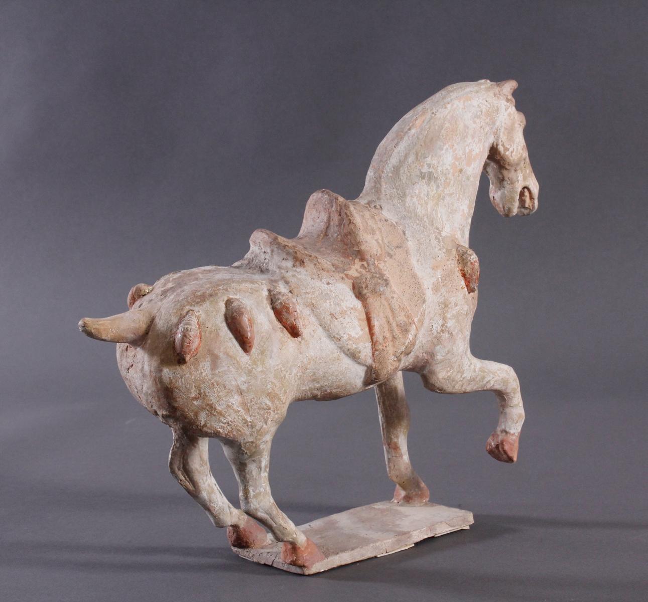 China Tang-Dynastie, Pferd aus gebranntem Ton-4