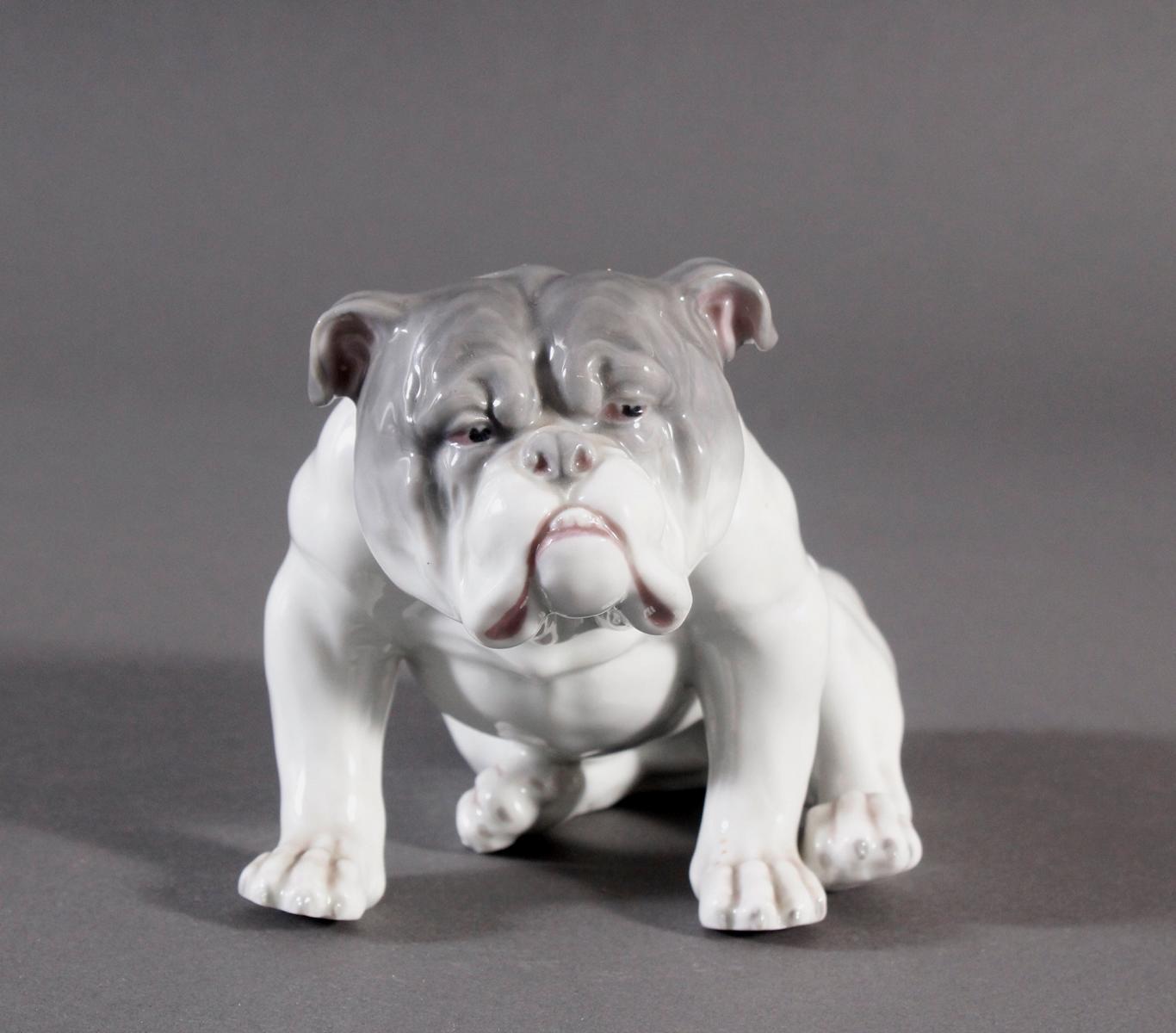 Bulldogge, Porzellanmanufaktur Heubach-2