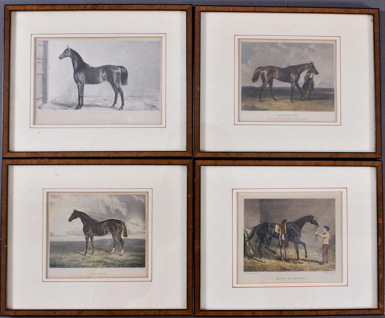Konvolut Druckgrafiken zum Thema Pferde