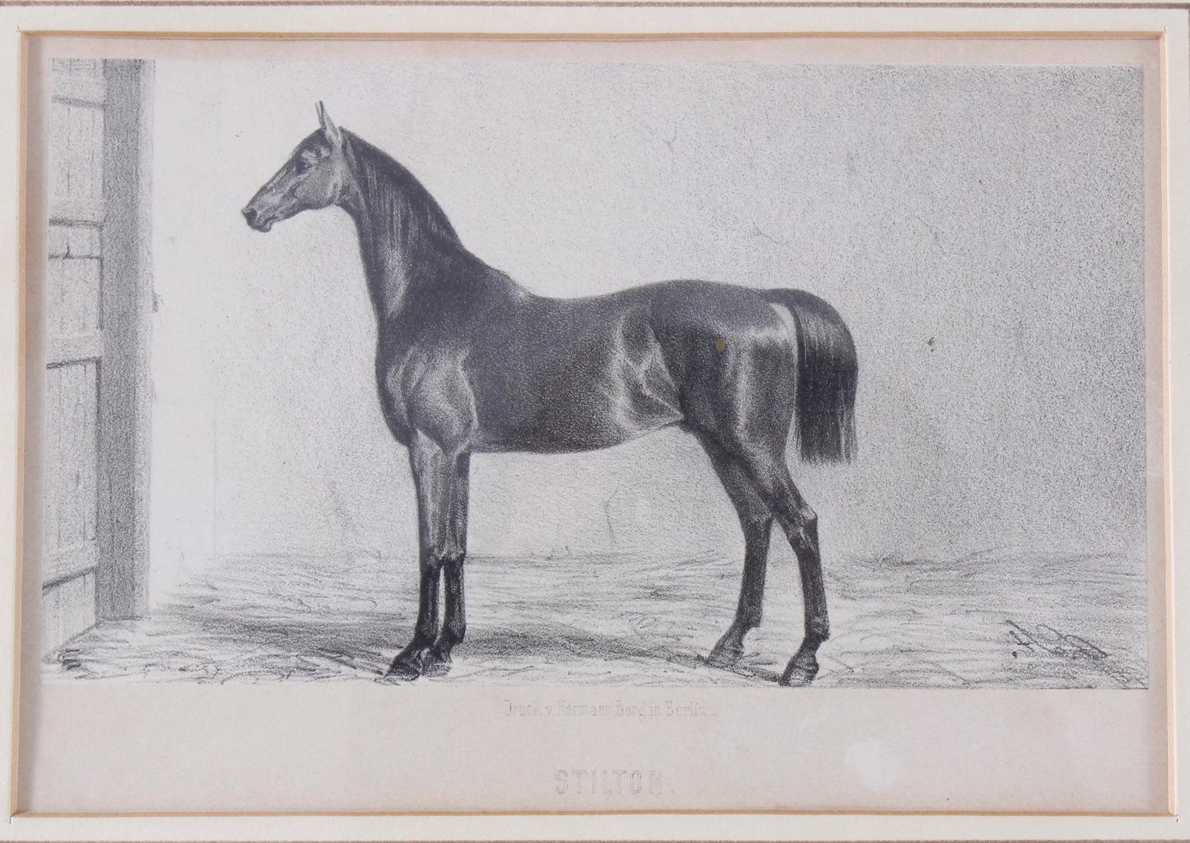 Konvolut Druckgrafiken zum Thema Pferde-2
