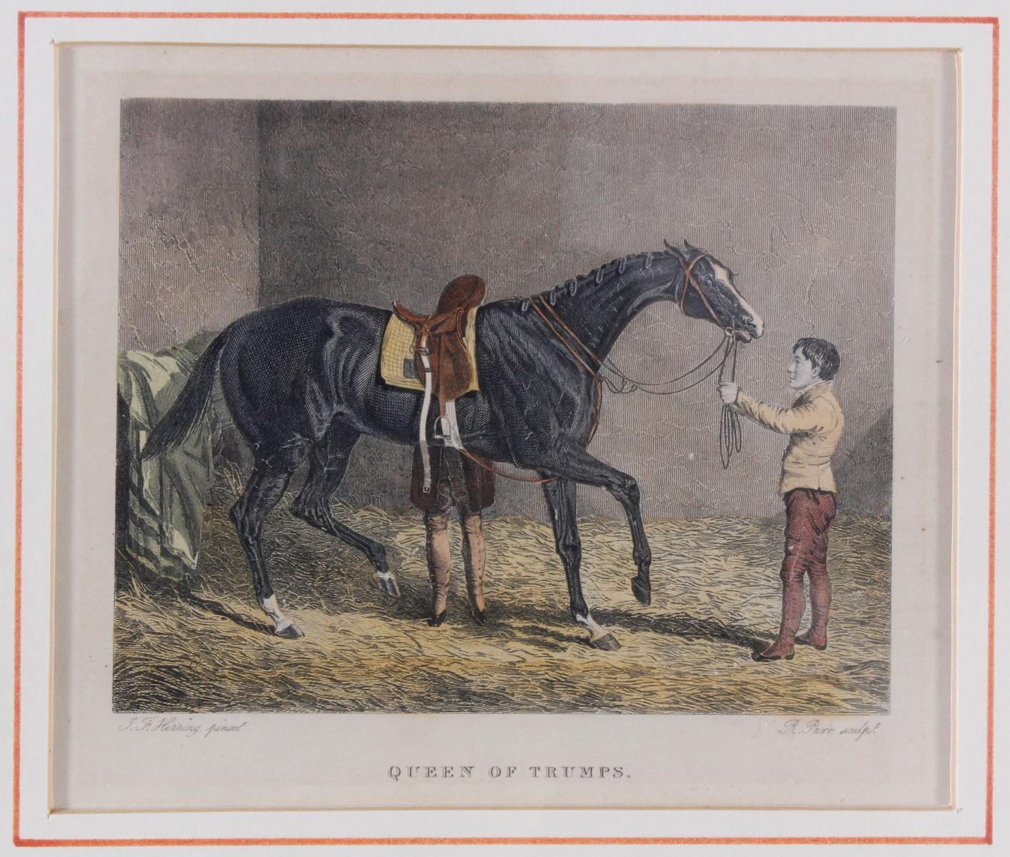 Konvolut Druckgrafiken zum Thema Pferde-4