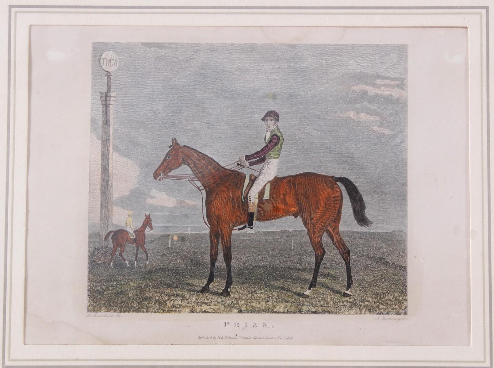 Drei Lithographien zum Thema Pferde-3