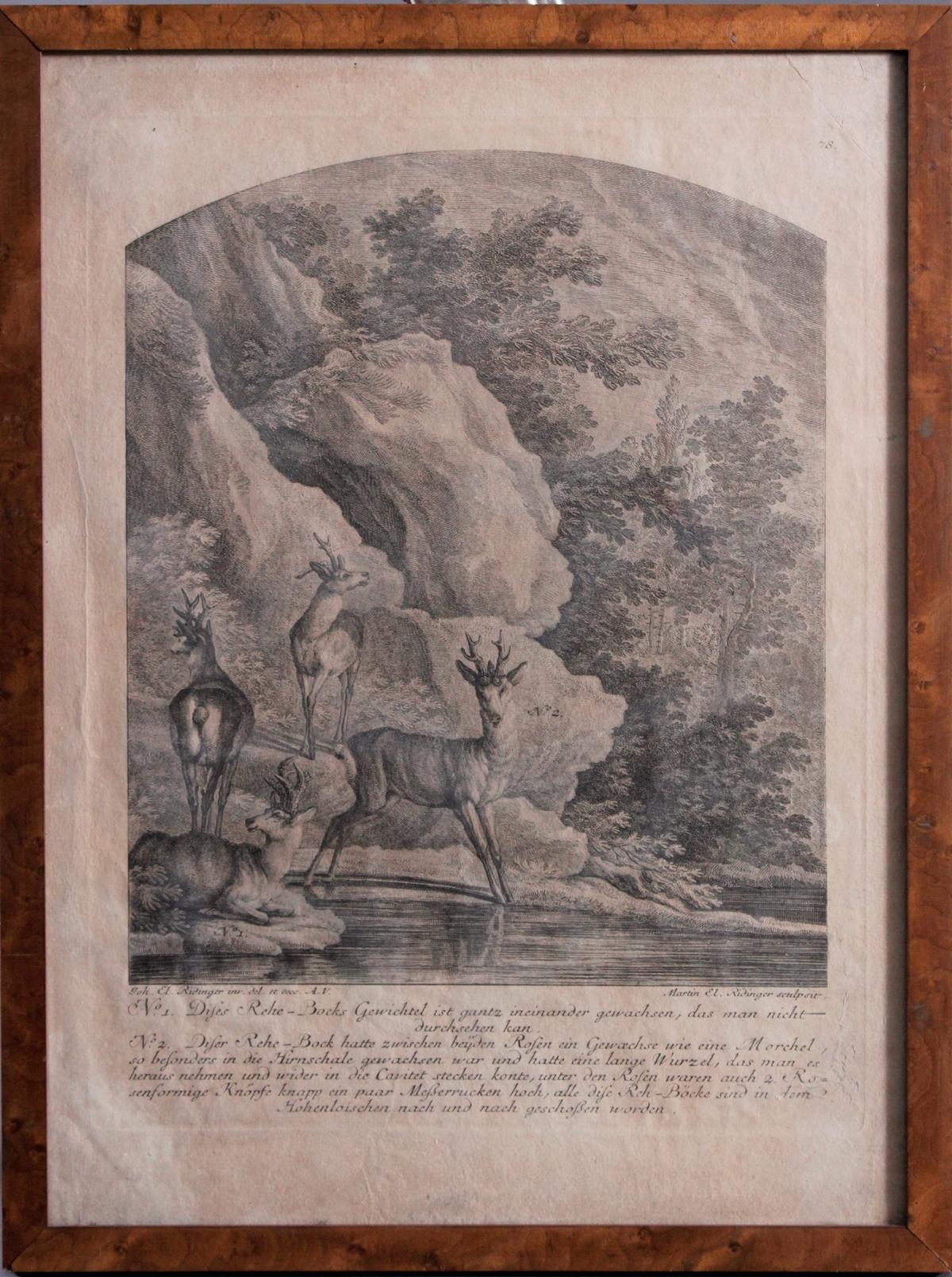 Martin Elias Ridinger (1730 – 1780) Augsburg