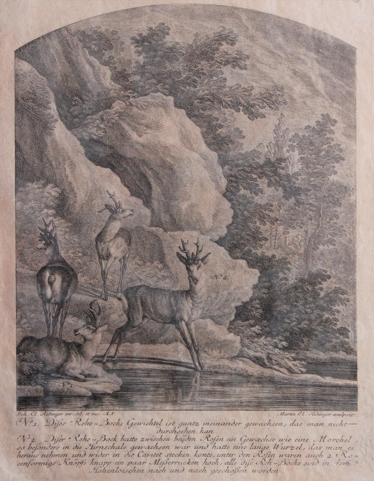 Martin Elias Ridinger (1730 – 1780) Augsburg-2