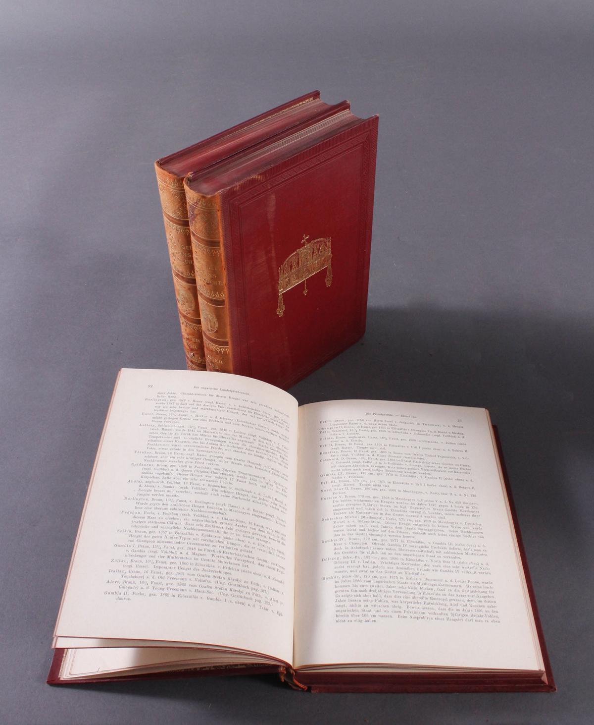 Graf Wrangl, Ungarns Pferdezucht in Wort und Bild in 3 Bänden-2