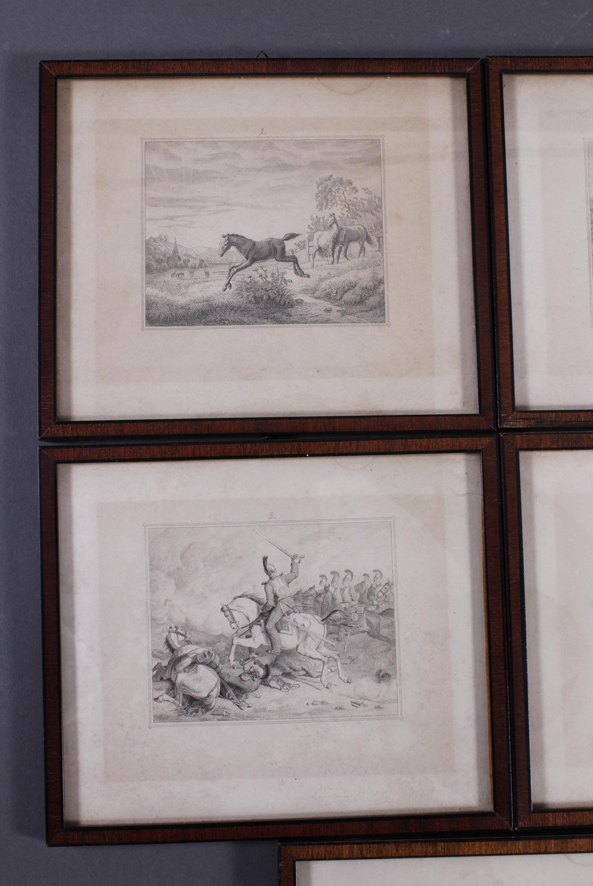 Acht Stahlstiche, Pferde und Reiter, 19. Jahrhundert-2