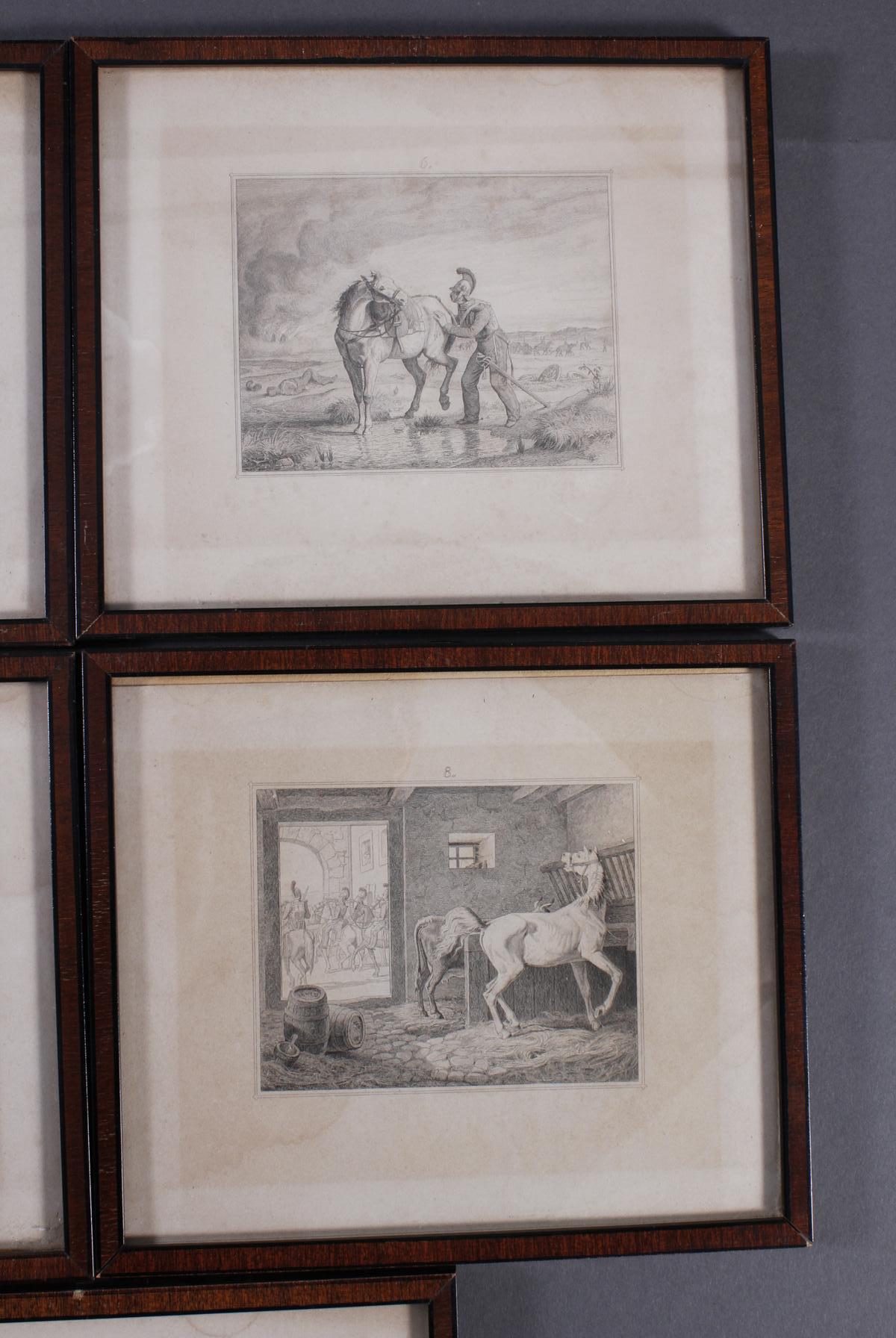 Acht Stahlstiche, Pferde und Reiter, 19. Jahrhundert-4