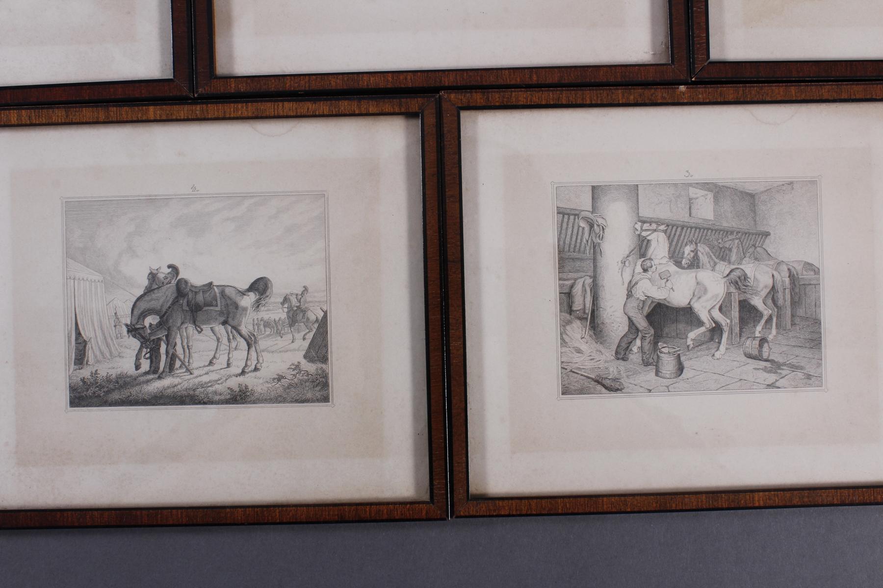 Acht Stahlstiche, Pferde und Reiter, 19. Jahrhundert-5