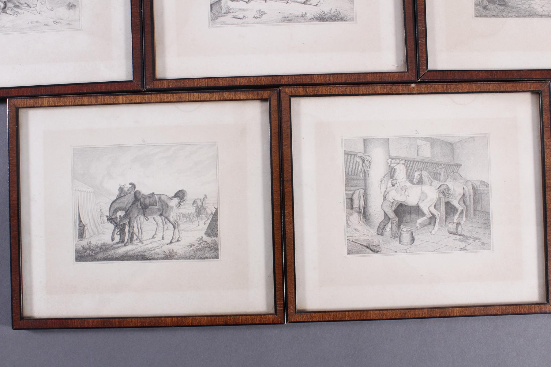Acht Stahlstiche, Pferde und Reiter, 19. Jahrhundert-6