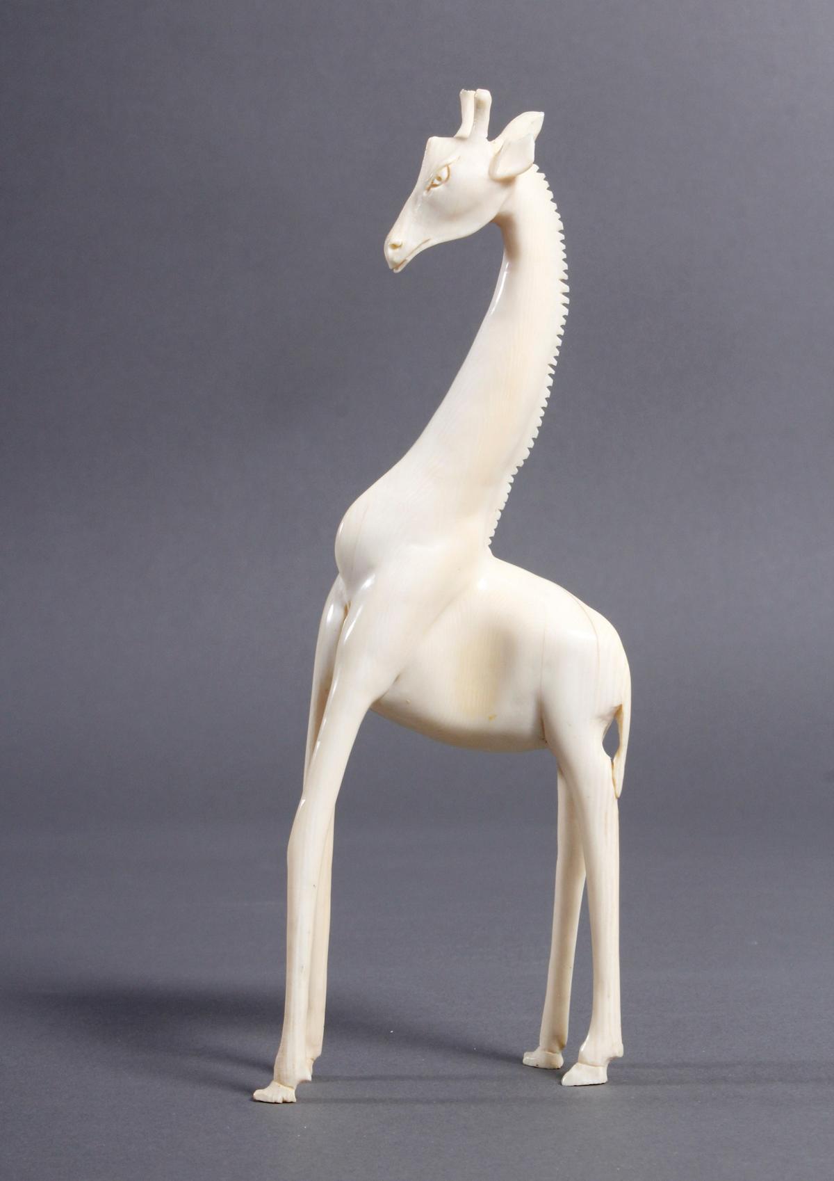 Elfenbein Giraffe, Afrika um 1930