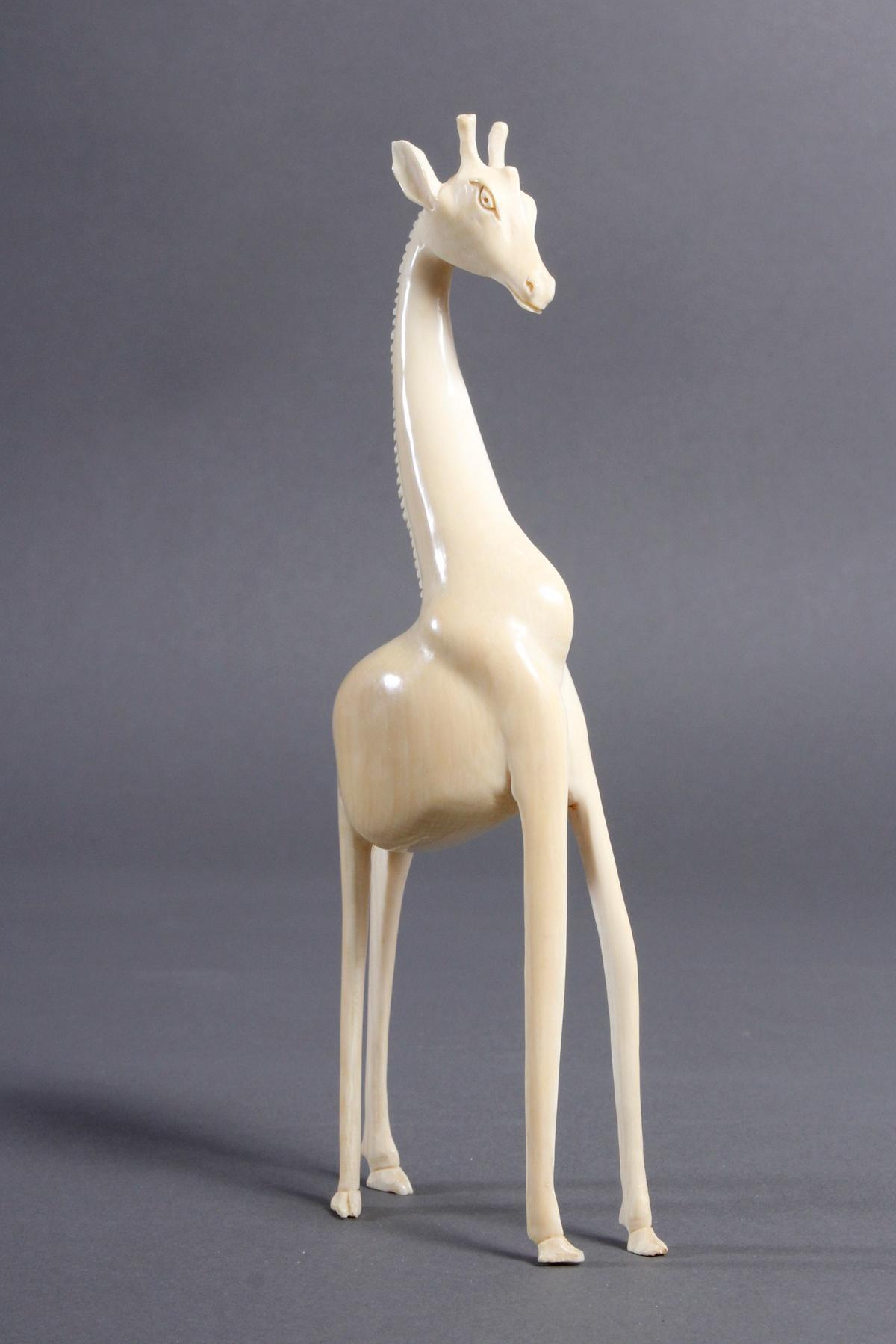 Elfenbein Giraffe, Afrika um 1930-2