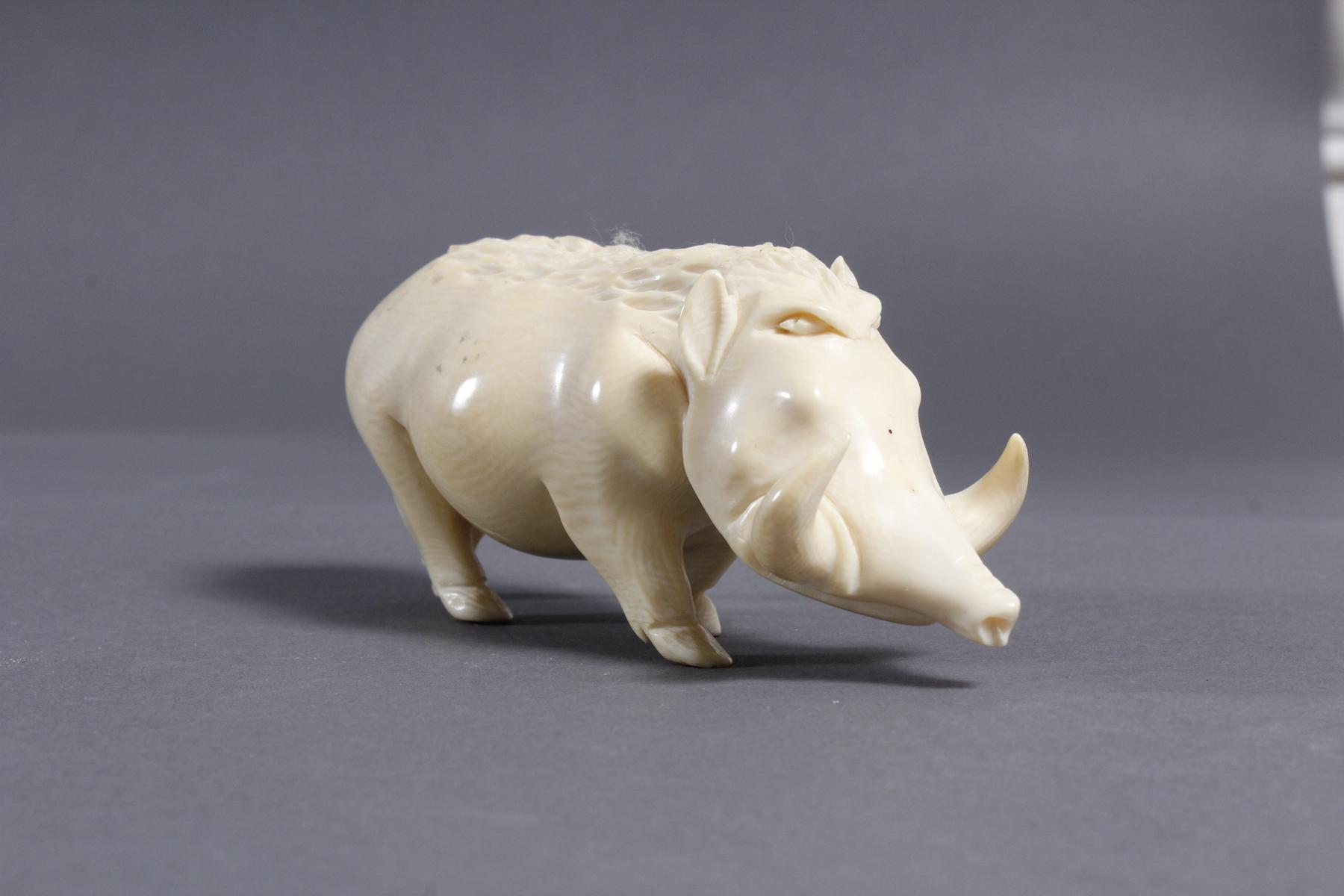 Elfenbein Warzenschwein, Afrika um 1930-2