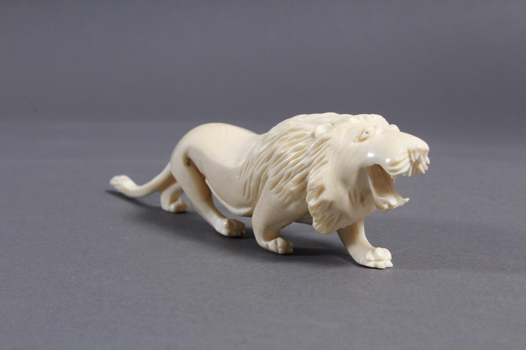 Zwei Elfenbein Löwen, Afrika um 1930-4