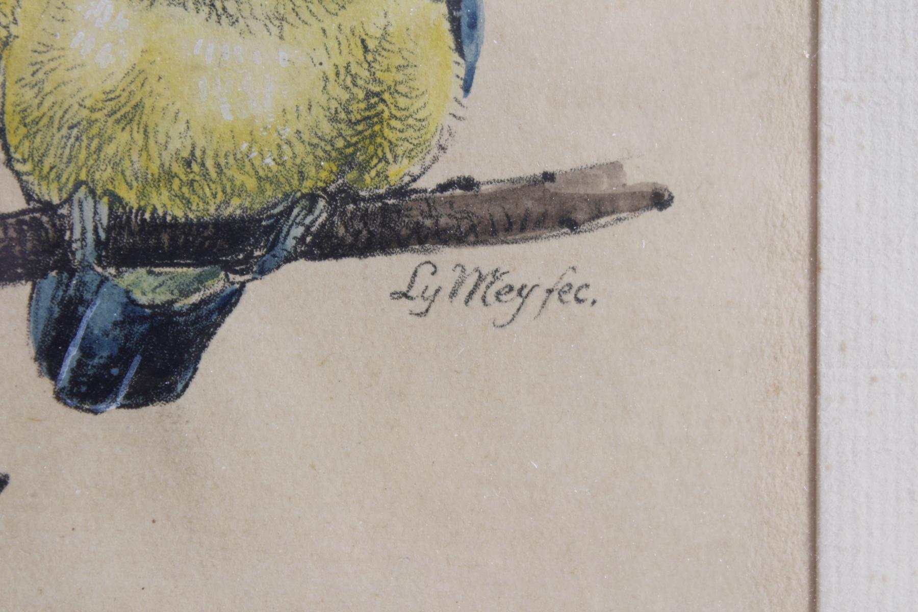 Ly Wei ?-?, 3 Vögel auf einem Kirschblütenzweig sitzend-2