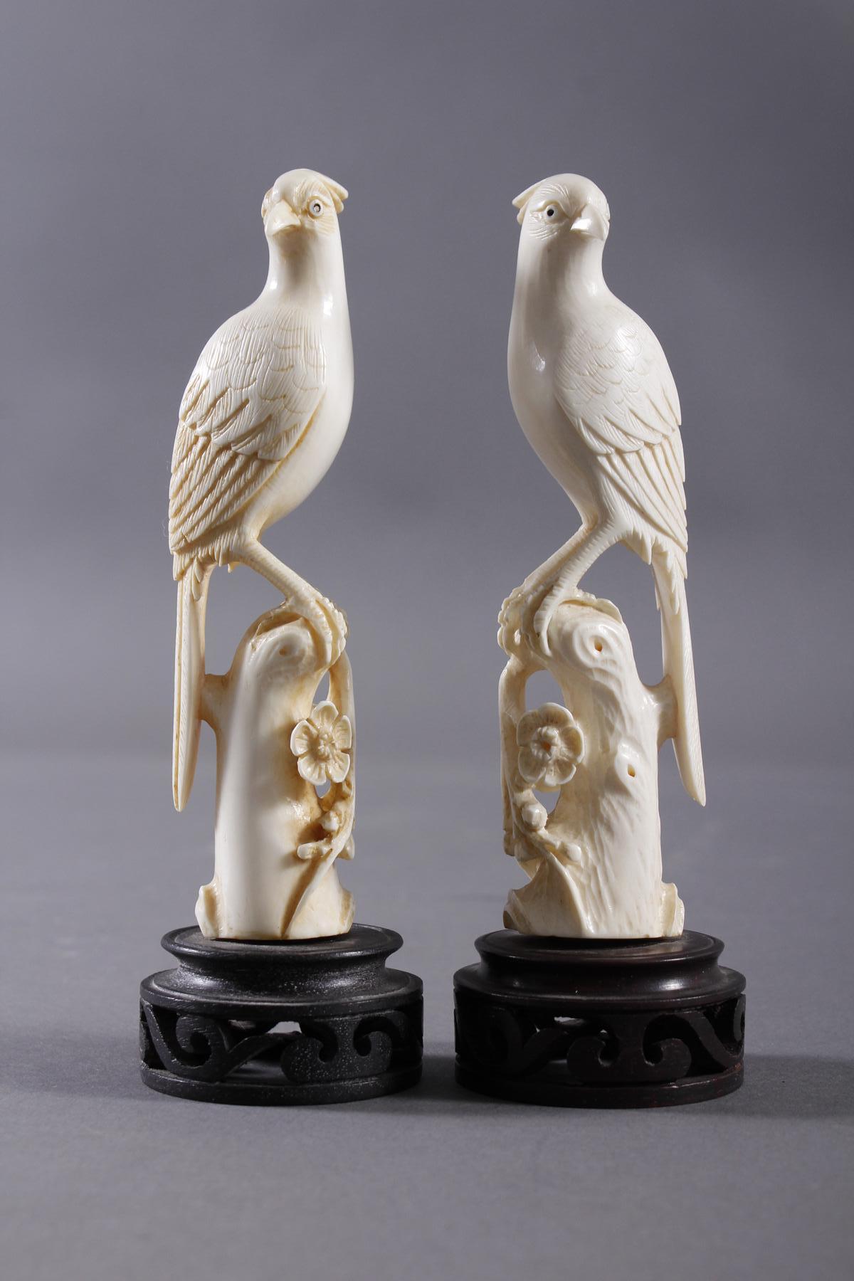 Elfenbein, Paar Paradiesvögel auf floral gestaltetem Ast, China Anfang 20. Jahrhundert