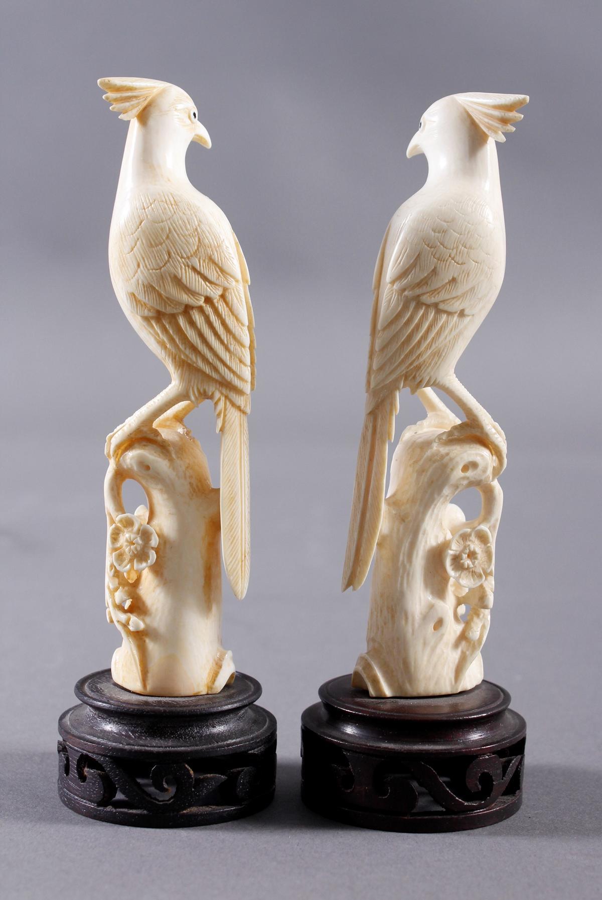 Elfenbein, Paar Paradiesvögel auf floral gestaltetem Ast, China Anfang 20. Jahrhundert-3