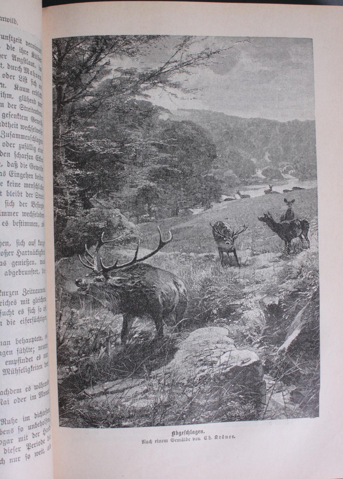 Handbuch für Jäger in Drei Bänden. Dietrichs aus dem Winckell, Band I-III-3