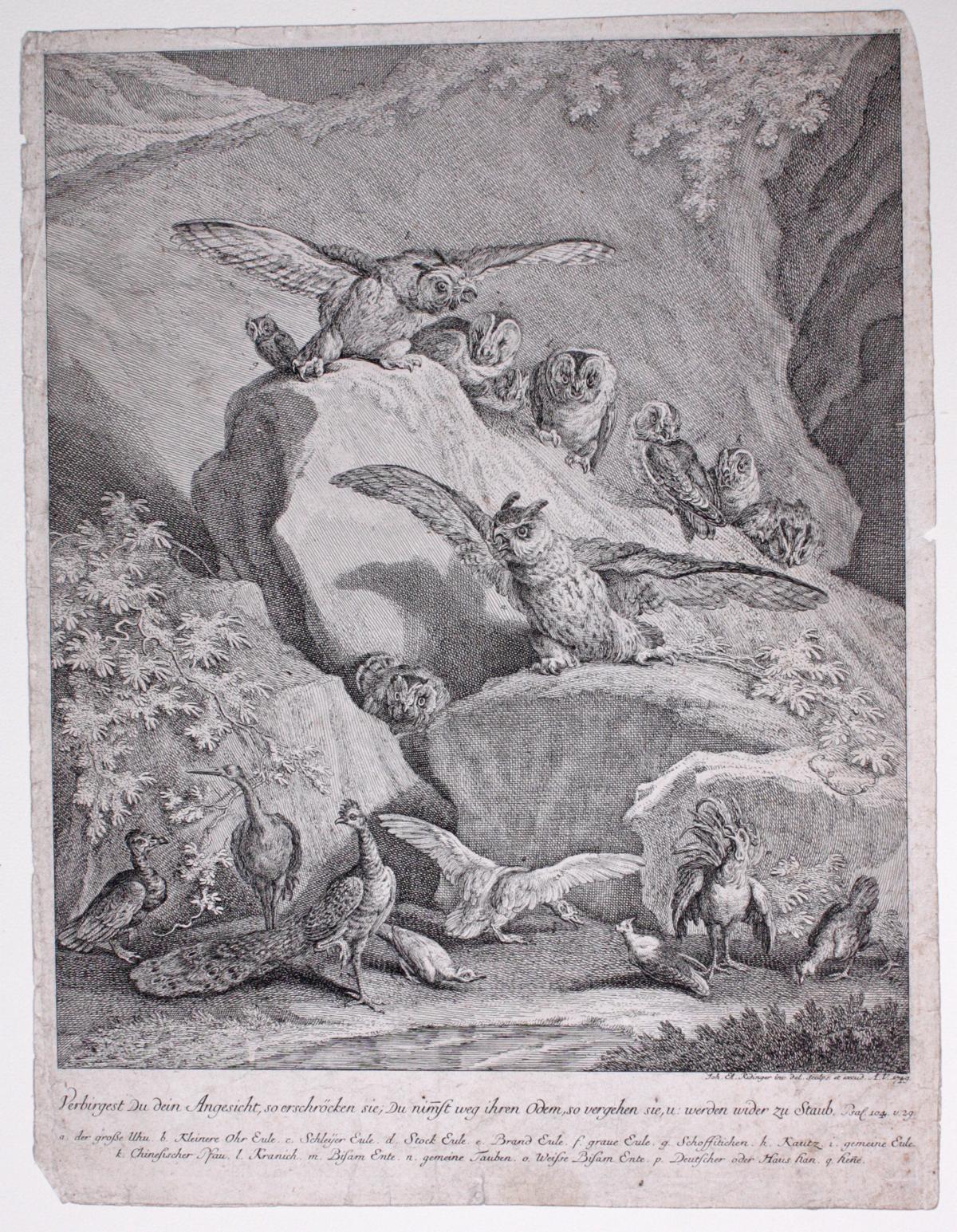 Johann Elias Ridinger (1698-1767). 2 Kupfertische-2