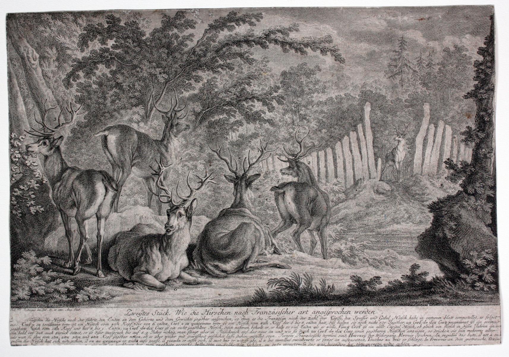 Johann Elias Ridinger (1698-1767). 2 Kupfertische-3
