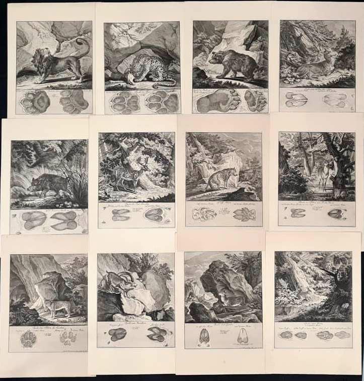 22 Abbildungen der Jagdbaren Thiere mit derselben angefügten Färten und Spuhren von Joh. Ridinger
