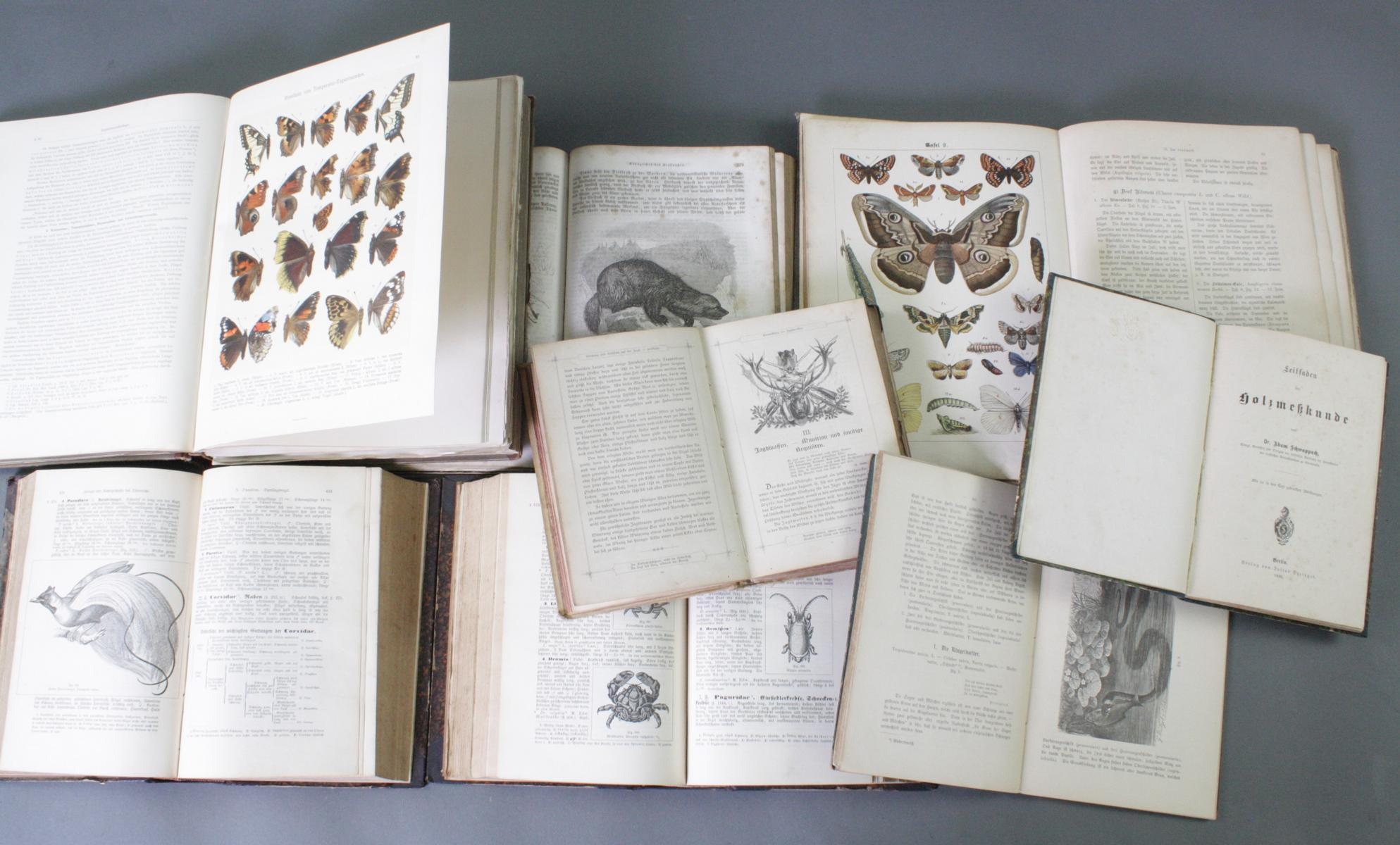 8 Bücher Tiere/Natur, 19. Jahrhundert-2